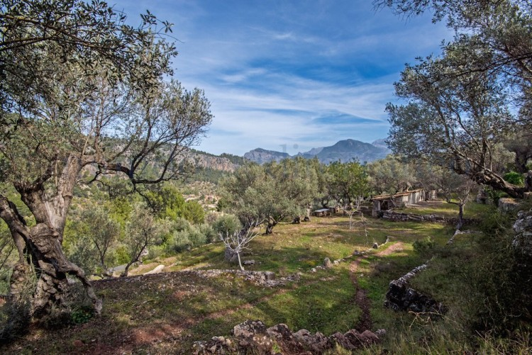 Property for Sale in Sóller, Sóller, Islas Baleares, Spain
