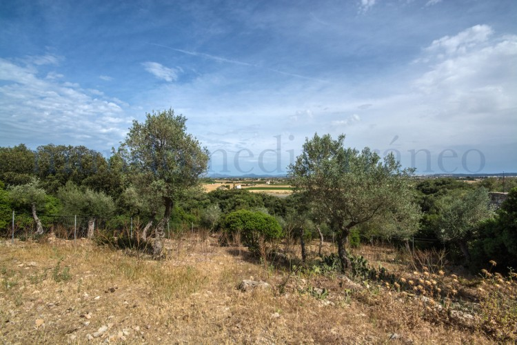 Property for Sale in Crestatx, Crestatx, Islas Baleares, Spain