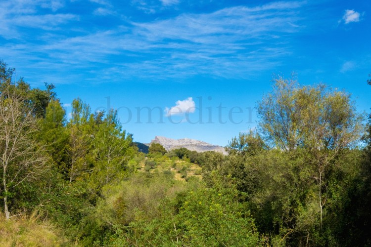 Property for Sale in Campanet, Campanet, Islas Baleares, Spain