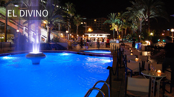El Divino - Nightlife in Mallorca